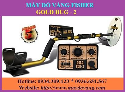 MÁY DÒ TÌM QUẶNG VÀNG, VÀNG CỒM FISHER GOLD BUG-2